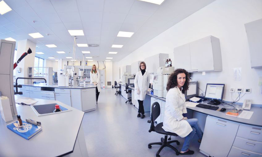 Alzheimer's disease researchers